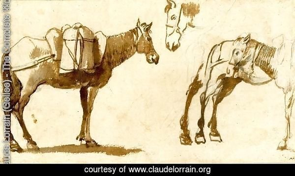 Drawing of mules, including one full length